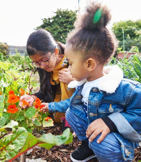 Ils proposent de cultiver local pour nourrir nos enfants