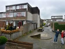 Dit is hoe deze woonwijk de eigen buurt weer laat opfleuren: 'We worden voorbeeld voor heel Lopik'