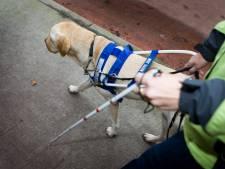 Ruimer baan voor blinden en slechtzienden in Etten-Leur