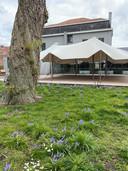 De tuin van De Gulden Haan, met terras en stretchtent