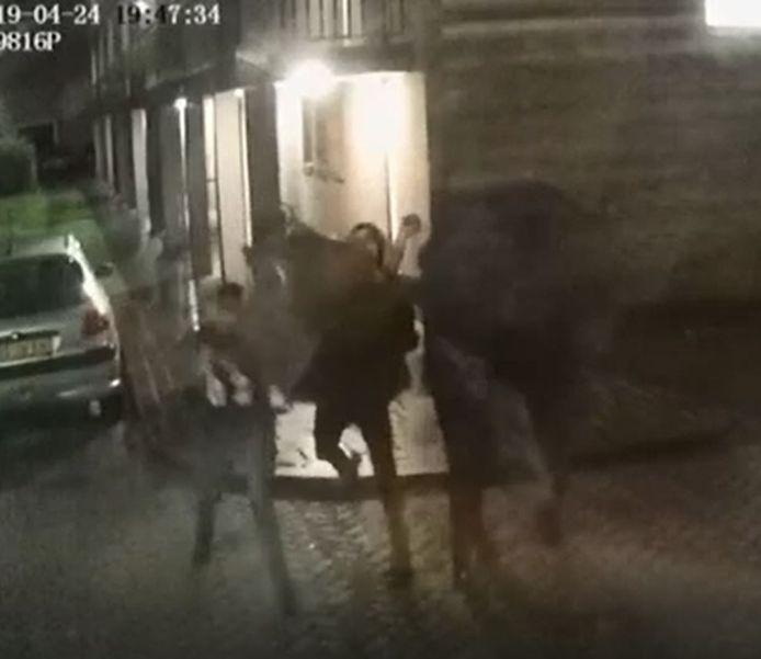 Jongeren vallen al maanden een gezin in Boschveld lastig met het gooien van eieren, yoghurt en tomaten