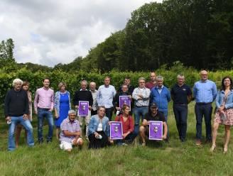 """'Sprankelend Hageland', vier weekends in het teken van wijn: """"Binnenkort kunnen we de sappige druiven van de wijngaarden weer oogsten"""""""