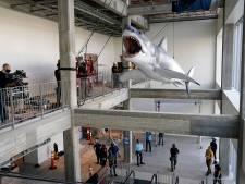 De enig overgebleven haai uit Jaws wordt tentoongesteld in Oscarmuseum