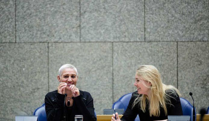 Mansveld en Schultz van Haegen