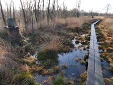 De overlevingsstrijd van zompige oernatuur in Oost-Nederland