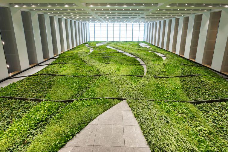 The atrium at the new EMA headquarters  Beeld Maarten Boswijk