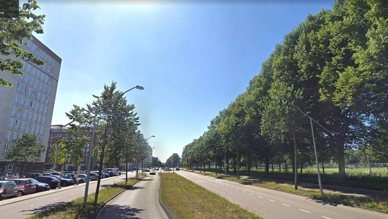 President Allendelaan Beeld Google Streetview