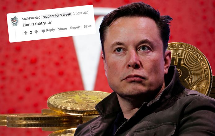 Op Reddit wordt de vraag gesteld of het bericht misschien van Elon Musk zelf kwam.