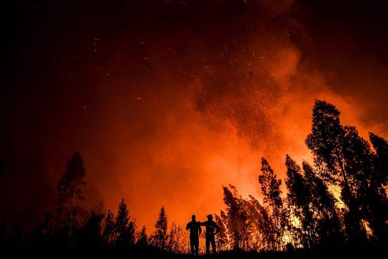 Brandweerlieden monitoren een bosbrand in centraal-Portugal. Beeld AFP