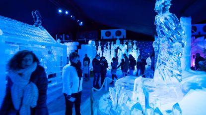 """Al vier steden tonen interesse in Brugse ijssculpturen: """"Dat we energieverslindend zijn, is een illusie"""""""
