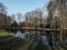 Onderzoek naar illegaal weghalen roekennesten in Zevenaar: 'Boete tot 20.000 euro mogelijk'