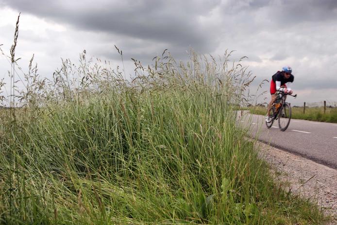 De dijk tussen Doornenburg en Angeren.