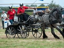 Noordwelle maakt zich op voor Power Horse Competition