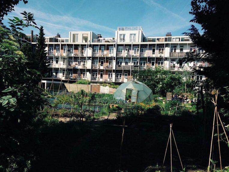 De binnentuin waar je met een versnapering van het stiltecafé een plekje kan zoeken is 1200 vierkante meter groot. Beeld Stiltecafé