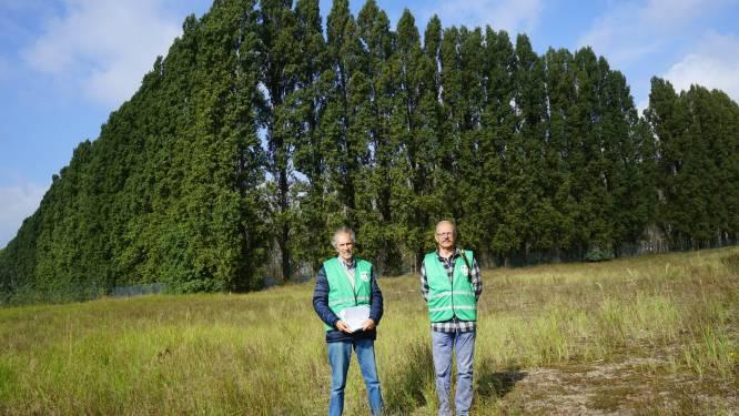 Lantis stelt kap van 200 bomen voor PFOS-berm voor onbepaalde tijd uit