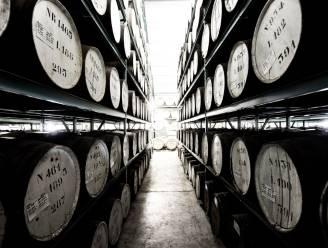 Filliers Distillery rijgt prijzen aan elkaar en brengt wodka op de markt