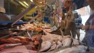 Vanaf dinsdag opnieuw markt in Koekelare