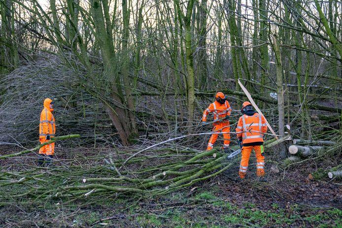 Afrit Den Bosch Maaspoort bij de A59 afgesloten door gevaar van omvallende bomen.