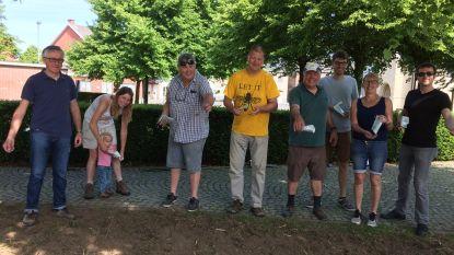 Herentse milieuadviesraad en schepen van leefmilieu Jan Schelstraete (Open VLD) leggen bloemenakker aan op het dorpsplein van Winksele