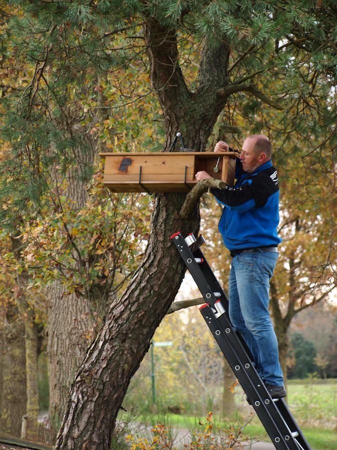Vrijwilliger van Brabants Landschap plaatst een nestkastje.