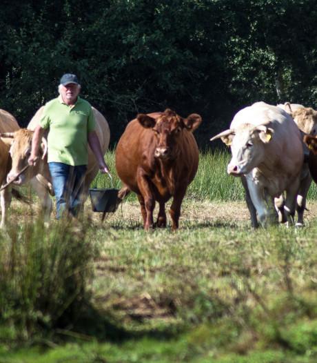 Pluim voor boerderij 't Schop in Hilvarenbeek, 'Jan is een ware Brabantse pionier'