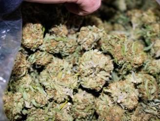 Aalterse drugsdealer (23) betrapt met 250 gram cannabis: parket vraagt om bijna 20.000 euro op te hoesten
