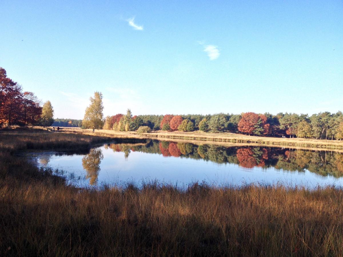 Tijdens een heerlijke herfstwandeling bij Keelven Someren, genietend van de kleuren en weerspiegelingen daarvan in het water.
