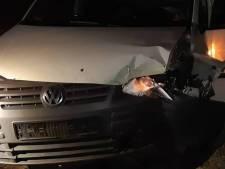 Man (30) in gestolen auto botst tegen boom in Etten-Leur na 'stevige achtervolging' door de politie