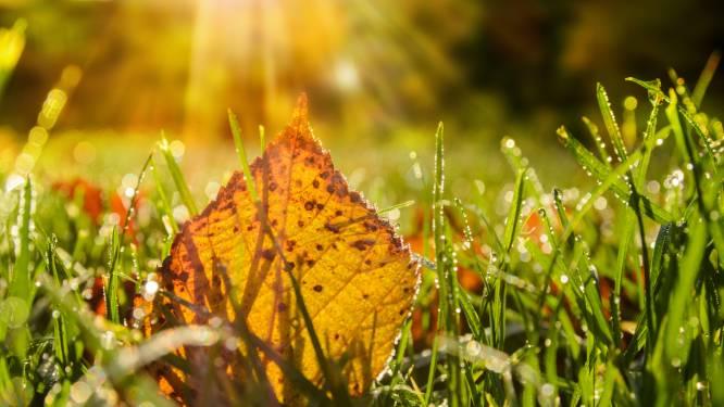Un temps ensoleillé et sec pour débuter la semaine, jusqu'à 22 degrés attendus mardi