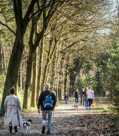 Team Catharina Ziekenhuis gaat wandelen met borstkankerpatiënten