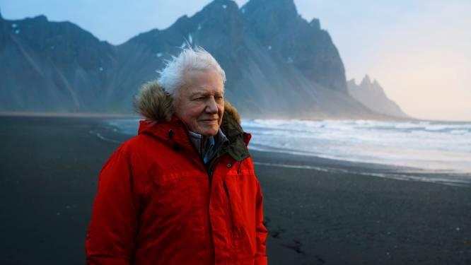 """David Attenborough (94) verschijnt op Instagram en heeft in geen tijd bijna 3 miljoen volgers: """"De wereld zit in de problemen"""""""