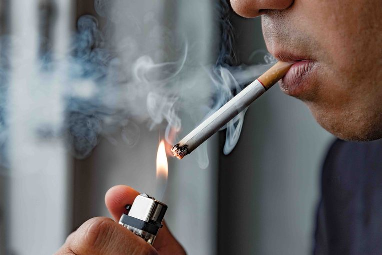 Roker Beeld ShutterStock