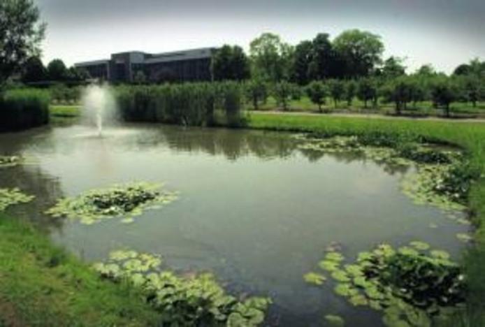 De tuin van Mariadal is een oase van rust.