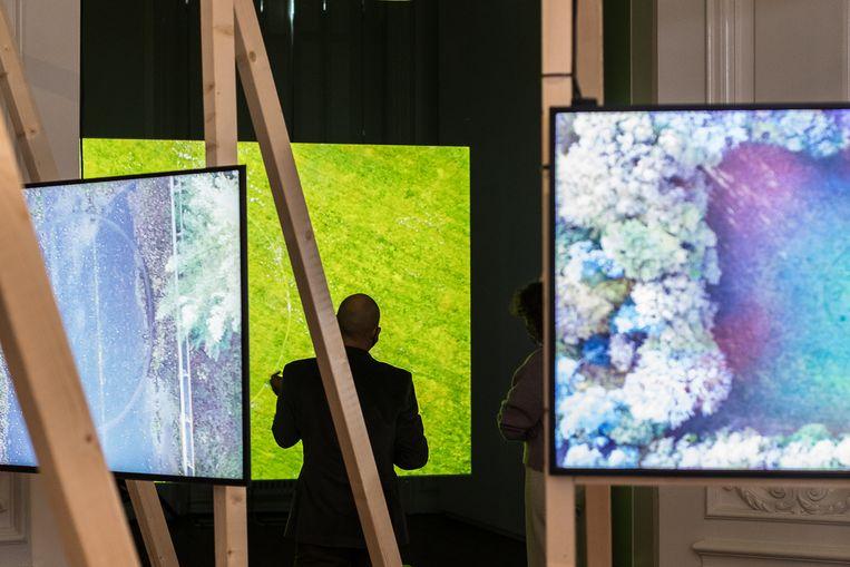 Running in circles, een serie video's van Jeroen Jongeleen in Upstream Gallery in Amsterdam. Beeld Natascha Libbert.