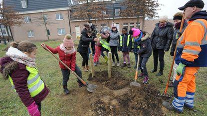 Inwoners kunnen binnenkort fruit plukken in gemeentelijke boomgaard