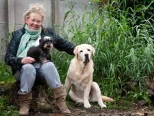 Wendy (60) is de reddende engel van veel dieren: 'Een schaap dat op z'n rug ligt, help ik op vier poten'