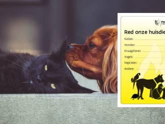Stad Zoutleeuw wijst inwoners op huisdierensticker