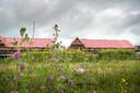 Nieuwbouw in Hernen. Koopwoningen in Het Hoge Rot.
