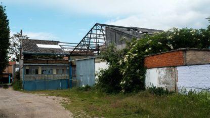 """Igean sust buurtbewoners: """"Geen gezondheidsrisico's bij afbraak loods met asbestplaten"""""""