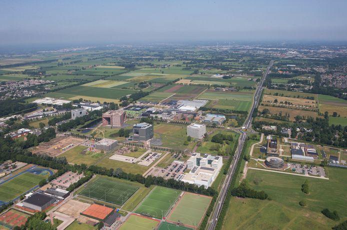 Ook langs de Mansholtlaan bij de Wageningen Campus is natuur te vinden