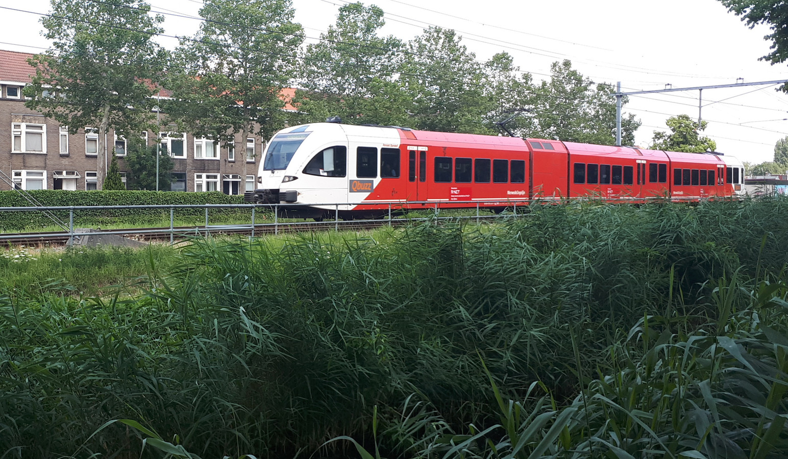 Een trein van Qbuzz op de MerwedeLingelijn.