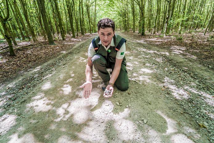 Laurens Bonekamp van Staatsbosbeheer bij het Balijbos
