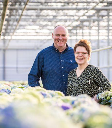Sierteelt niet langer in zwaar weer: 'We willen allemaal een bloemetje op tafel'
