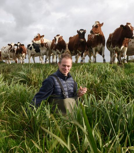 Europese waterregel kost boer Jaco 30.000: 'Het water in mijn sloot is schoner dan drinkwater'