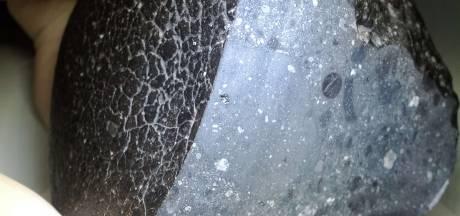 Meteoriet blijkt oudste stukje Mars ooit gevonden op aarde