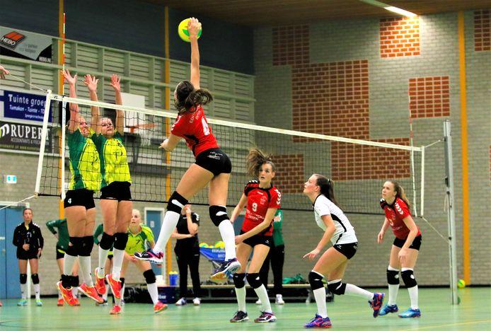 De volleyballers van Holyoke en de omnisporters van Raduga zijn veelgebruikers van sporthal De Zomp.