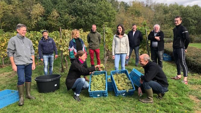 CVO Brussel Campus COOVI start opleiding wijnmaken