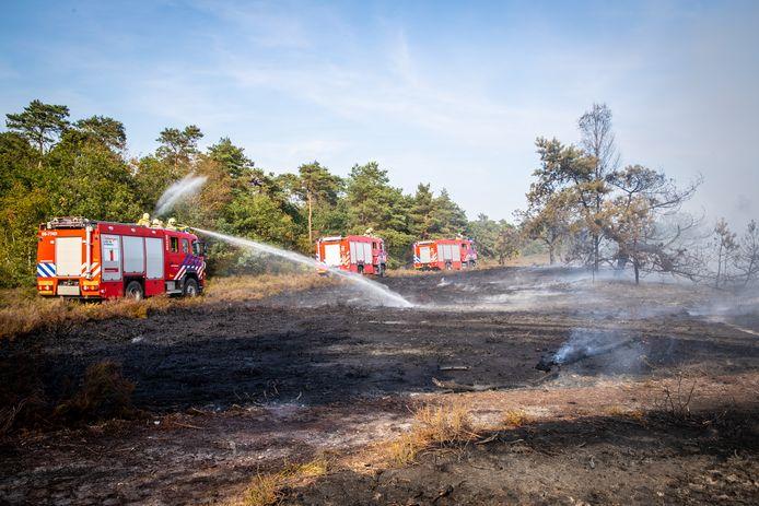 Met meerder bluswagens vormde de brandweer een barrière tussen het vuur en het bos.