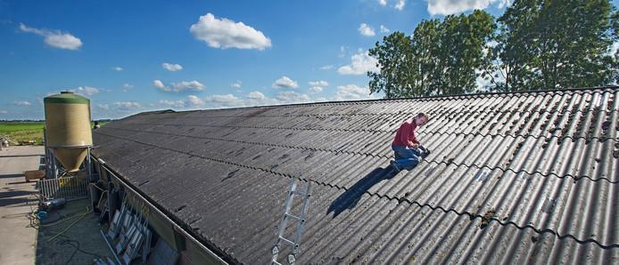 Varkenshouder Erik van Casteren op het dak van zijn stal, bezig met een provisorische reparatie.