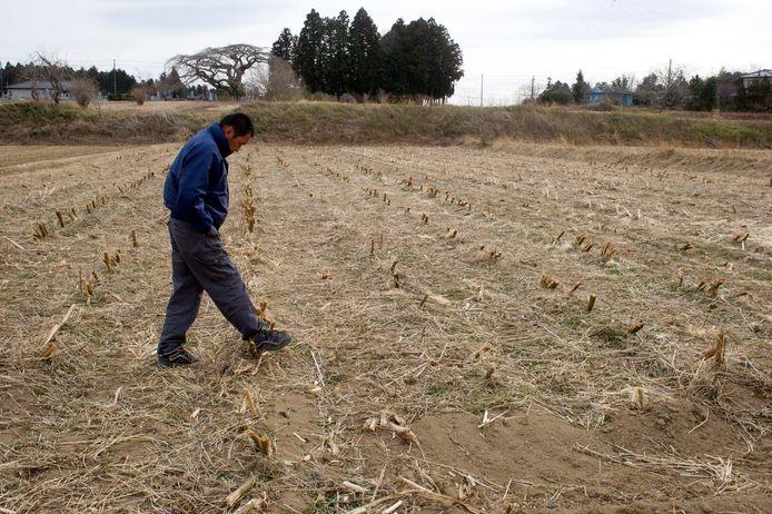 18 kilometer verwijderd van de kerncentrale in Fukushima loopt deze boer over zijn troosteloze akker